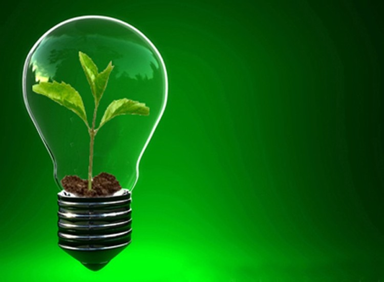 entrepreneur_seed_large